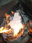 burn novel