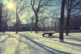w snow