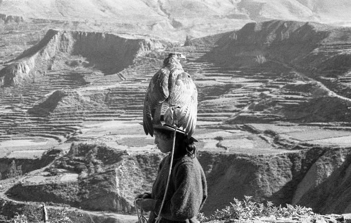 """Hawk Girl""  Colca Canyon, Peru.  2000.  Format: scan of BW negative."
