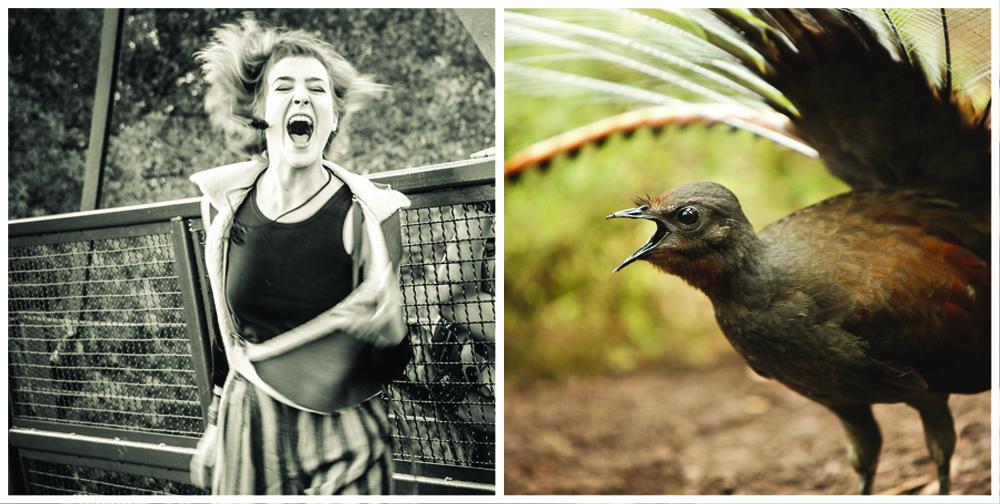 NAOMI and bird